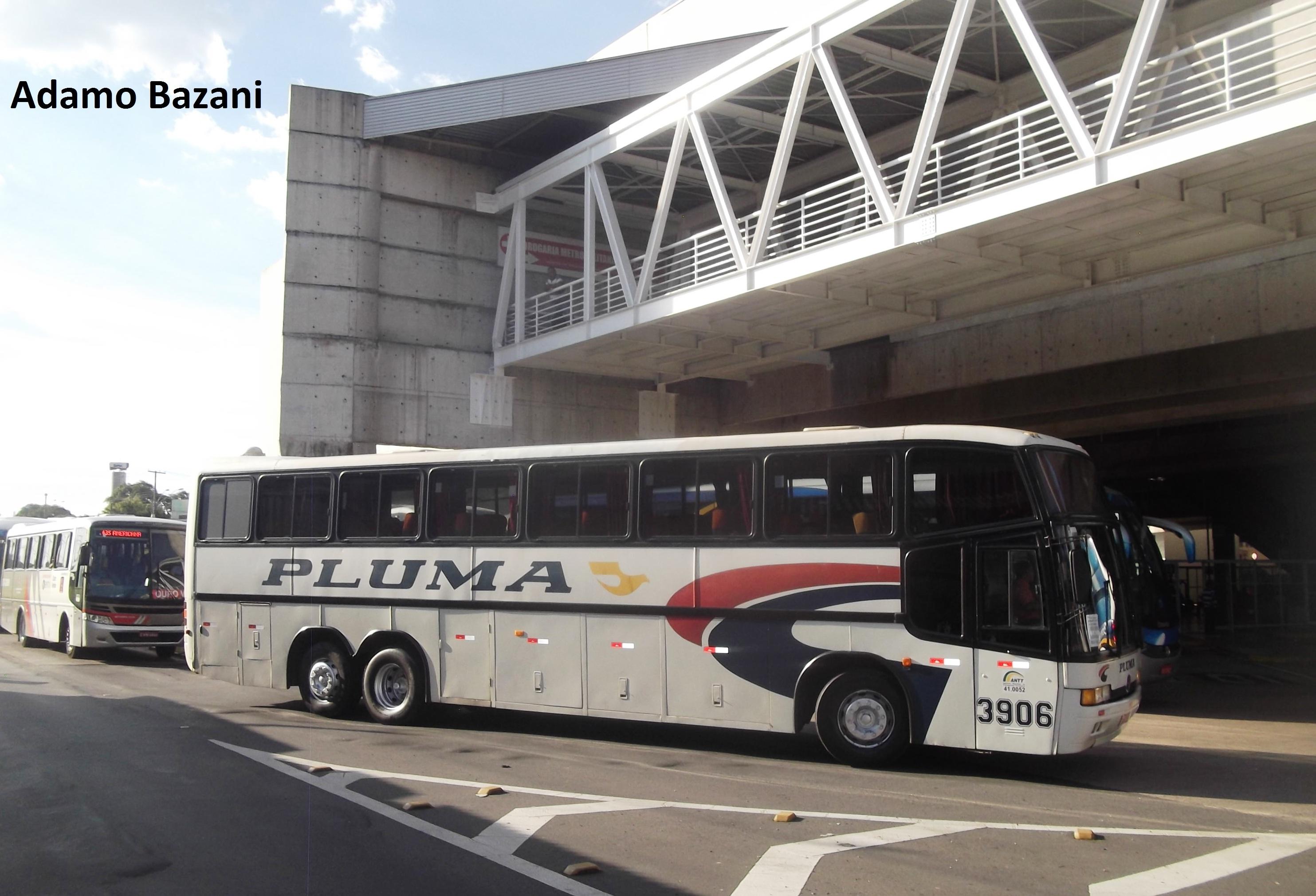 ônibus pluma