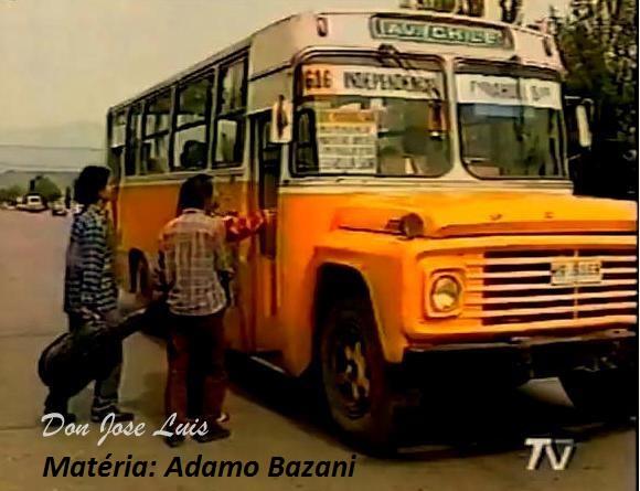 O Gabriela teve uma versão para a América Latina. O Caio Gabriela Andino foi encaroçado em diversos chassis de caminhão, como da Mercedes-Benz, Ford e Dodge